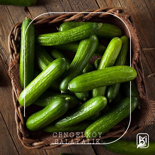 Çengelköy Salatalık (1kg)